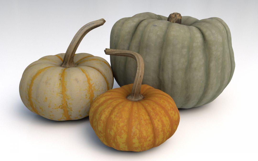 CG Object Pack 02 – Pumpkins