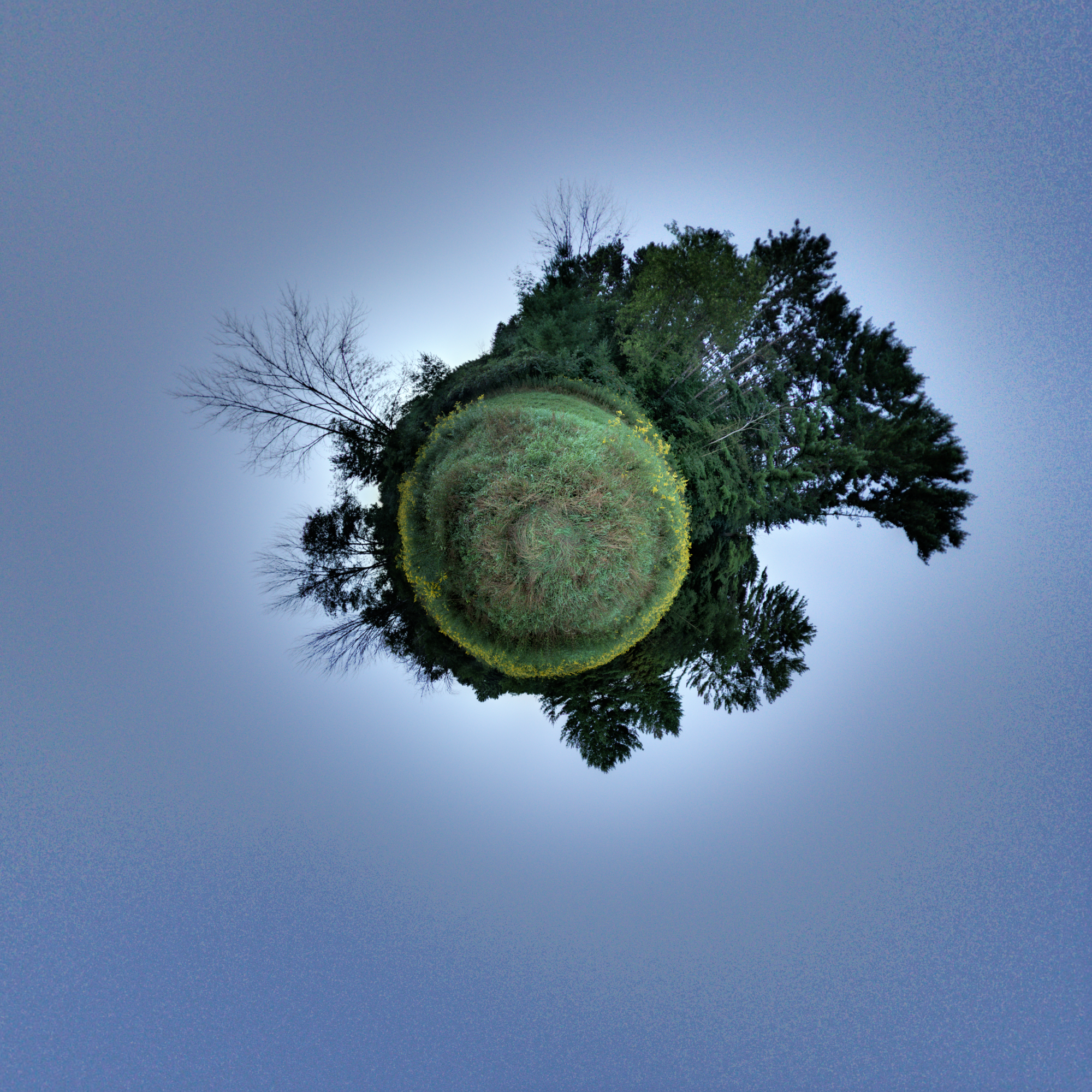 Pano 50 Featured Image