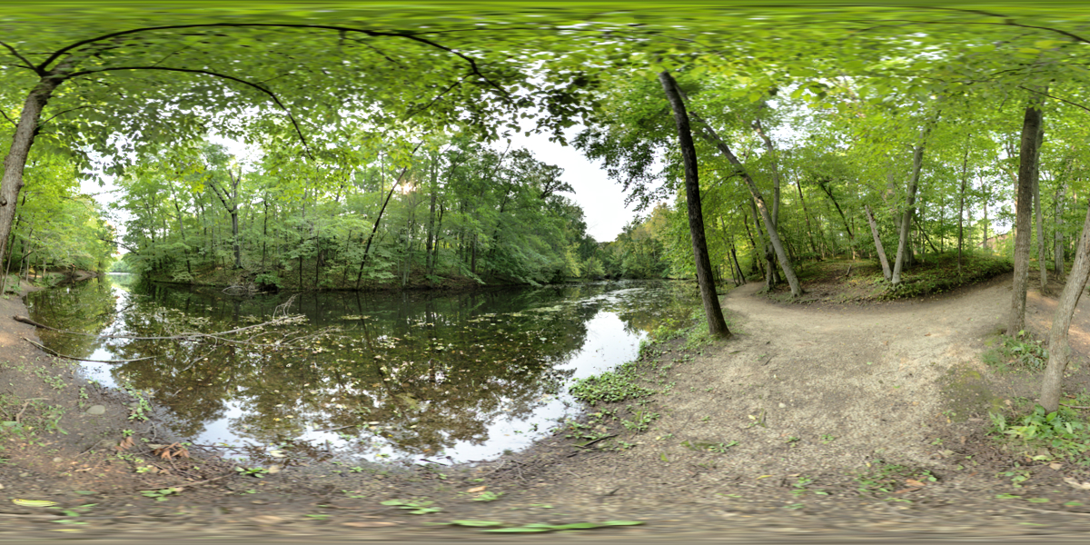 Pano 54 Preview