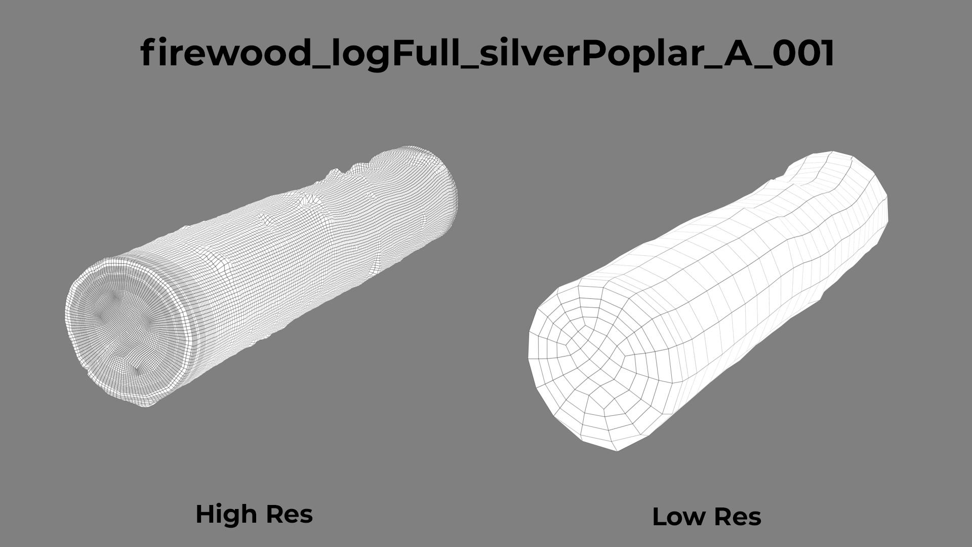 Silver Poplar A wireframe