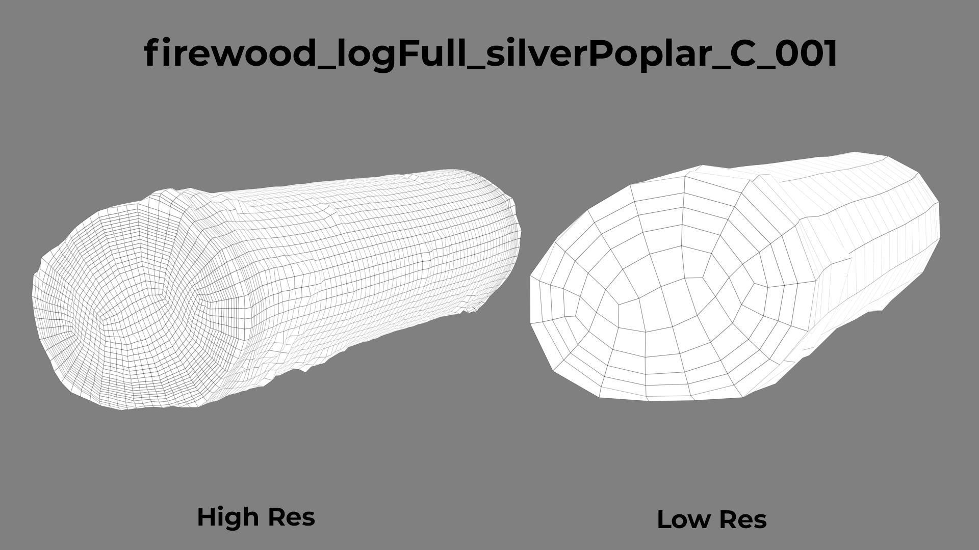 Silver Poplar C wireframe